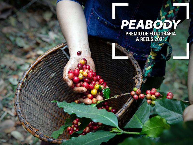 Premio Peabody de Fotografía y Reel 2021